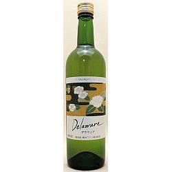 2671 熊本ワイン 熊本デラウエア 720ml